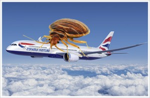 british-airways-bed-bugs