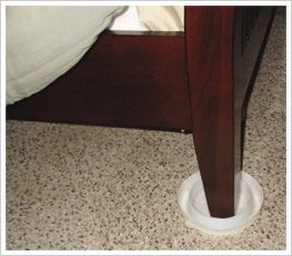 bed bug detection device